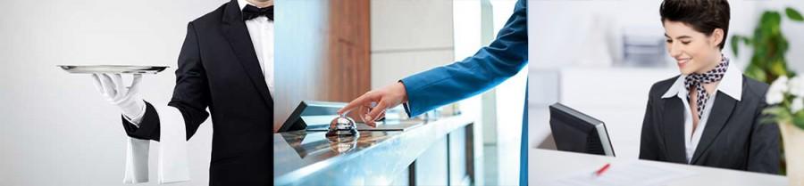 DIPLOMATURA EN  DIRECCIÓN Y GESTIÓN DE EMPRESAS HOTELERAS