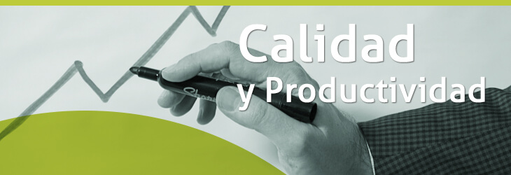 DIPLOMATURA - GESTIÓN DE LA CALIDAD Y PRODUCTIVIDAD EN EMPRESAS DE SERVICIO