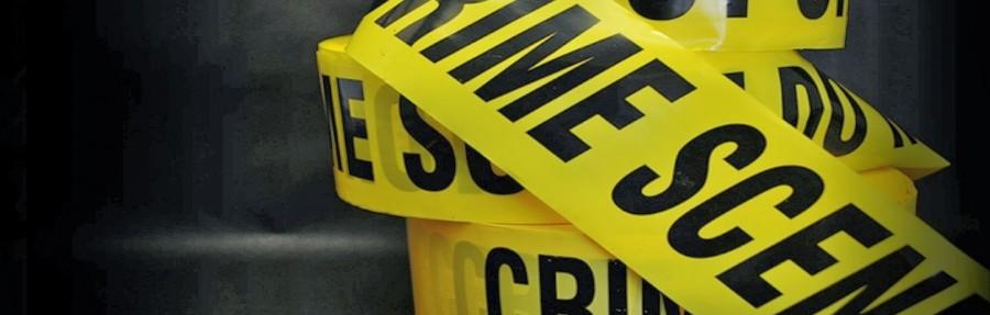DIPLOMATURA EN CRIMINOLOGÍA Y SEGURIDAD